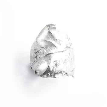 Anillo-hoja-plata